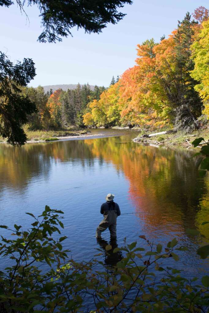 Fishing the world famous Margaree River